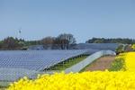 Kabinett verabschiedet Novelle der Grenzüberschreitenden Erneuerbare-Energien-Verordnung