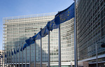 EU-Kommission braucht zusätzliche Befugnisse zur Realisierung des europäischen Erneuerbaren-Ziels
