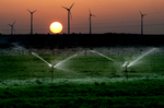 Global: Wind Power Leads All New Power Generation