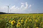 Neuartiger Windgas-Elektrolyseur startet Testbetrieb