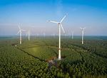 Wald und Wind im Sauerland und im Oberbergischen – passt das zusammen?