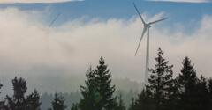 Image: EDF Renewables