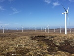 Deutsche Windtechnik wins a major new contract in Great Britain for the maintenance of 61 Siemens SWT 2.3 wind turbines