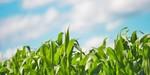 General Mills continues clean energy leadership