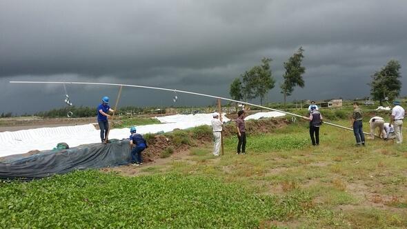 Errichtung des Windmessmastes an der vietnamesischen Küste (Bild: Universität Rostock)