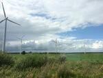 Windenergie an Land: Ergebnis der zweiten EEG-Ausschreibung verschärft Risiken der Hersteller und Zulieferer