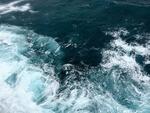 Projekt 'marTech': Rund 35 Millionen Euro für die Erweiterung des Großen Wellenkanals in Hannover