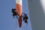 Rotor blade service