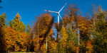 Wind farms in wooded areas