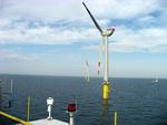 Offshore-Windenergie: Natur- und umweltverträglicher Ausbau ist möglich