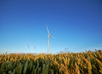 Siemens receives turbine and service order for largest wind farm in Ontario, Canada
