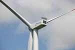 "Nordex to build Polish wind farm ""Orla"""