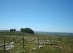 Vertrag unterzeichnet: juwi baut in Uruguay 50-Megawatt-Windpark