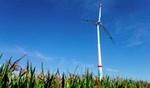 juwi: Windpark Offenbach an der Queich am Netz