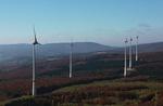 Neue Windkraftanlagen im Waldalgesheimer Wald