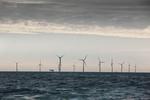Offshore-Windenergie im Zusammenspiel von Technik und Umweltschutz