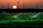 GWEC: Emerging Markets Drive Global Wind Growth