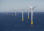 """Innerpark-Kabel für Offshore-Windpark """"Sandbank"""" werden verlegt"""