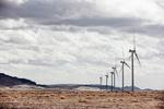 Kenya: Google to buy Vestas' shares in Lake Turkana Wind Power