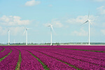 Germany: Senvion plans to go public in first half of 2016