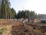 Schnorbacher Kinder pflanzen Bäume im Windpark