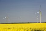 Erster Klimaausgleich für Dienstreisen der Bundesregierung UBA löscht Gutschriften für Treibhausgasemissionen