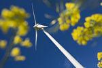 Smartcity Emden: dena-Chef sieht Plan für intelligente Energiestadt als Vorbild