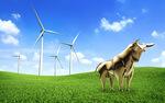 Gewissheit auf einen Blick: der energy consult Marktwertindex EE