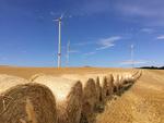 Kein Dauerblinken von Windenergieanlagen in der Süd-Uckermark / Brandenburg