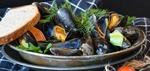 Ein Leckerbissen: Muscheln aus dem Offshore-Windpark