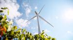 Französischer Windpark Saint-Pierre-de-Juillers verkauft