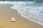 """BMWi stellt neuen Forschungsschwerpunkt """"MARITIME.value"""" zur umweltfreundlichen und wirtschaftlichen Nutzung von Ressourcen im Meer vor"""