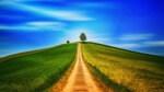 Hin zu einem neuen Wasserstoffmarkt - CertifHY-Herkunftsnachweise (GOs) für grünen Wasserstoff jetzt erhätlich