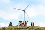 Steirischer Windkraftausbau wird auf niedrigem Niveau fortgesetzt