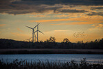 Siemens Gamesa Receives Orders for more than 0.5 GW in North America