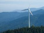 Breites Bündnis aus NRW appelliert: Windenergie im Wald nutzen!
