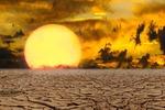 NABU: Die Bundesregierung hat die Klimakrise nicht verstanden
