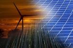 Anteil der Erneuerbaren Energien auf Rekordhoch