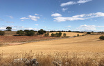 ABO Wind vende un proyecto de 100 megavatios en España