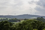 Australian State Plans Large-Scale Wind Farm in a Forest