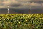Windenergie muss wieder Fahrt aufnehmen