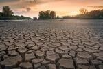 Studie zeigt: Klimawandel trotz Corona immer noch das drängendste Problem unserer Zeit