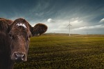 Enel Green Power and HP Hood LLC: delivering dairy with renewable energy
