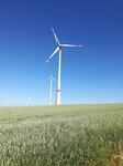 Erfolgreiches Bürgerenergieprojekt der Energiequelle GmbH und der Stadtwerke Nordhausen
