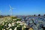 energy consult übernimmt Betriebsführung von fünf Windenergieanlagen und einem Umspannwerk