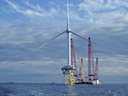 Fish thrive around Danish offshore wind farm