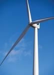 Siemens erhält 126-MW-Windenergie-Auftrag aus Irland