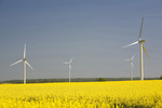 Anteil der erneuerbaren Energien kann weltweit verdoppelt werden