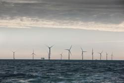 Der Windpark Horns Rev 2 (Foto: DONG Energy)