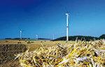 Sauberer Strom für Kasdorf